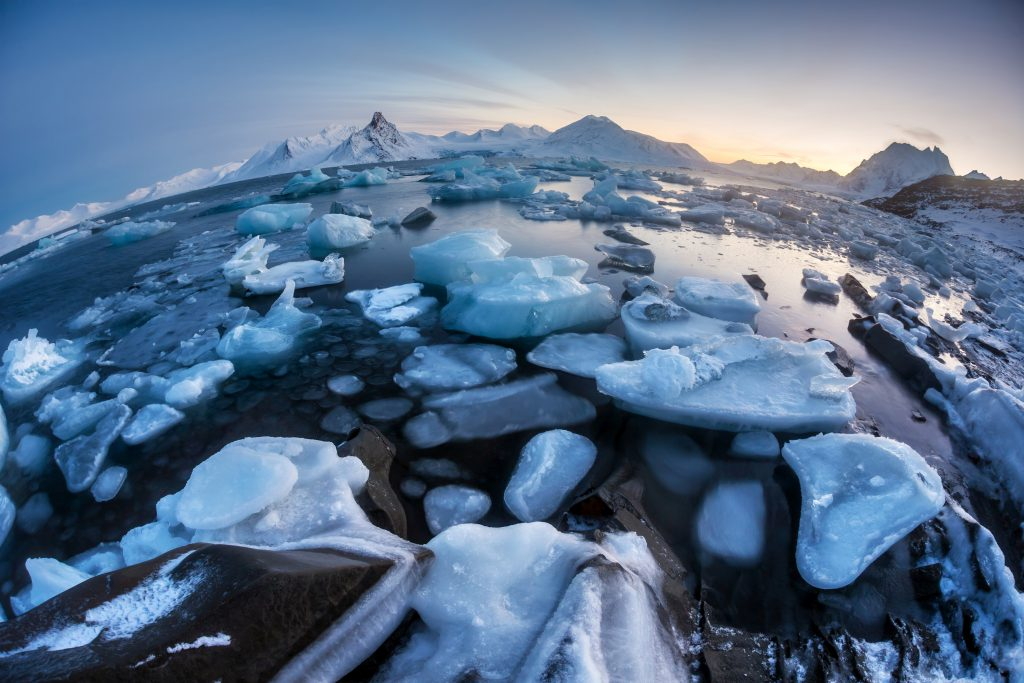 Trips to Antarctic from Argentina