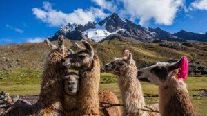 Ausangate trek to Machu Picchu
