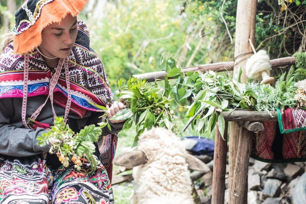 Peruvian Weaving - Observing local plants on Sacred Valley Tour