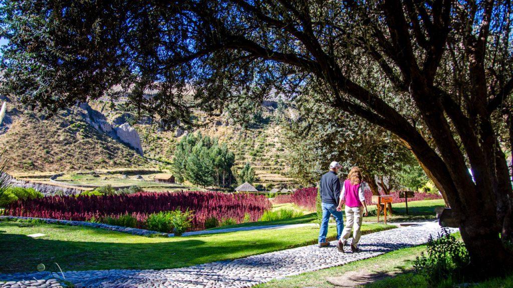 Colca Canyon - Lovely colca lodge