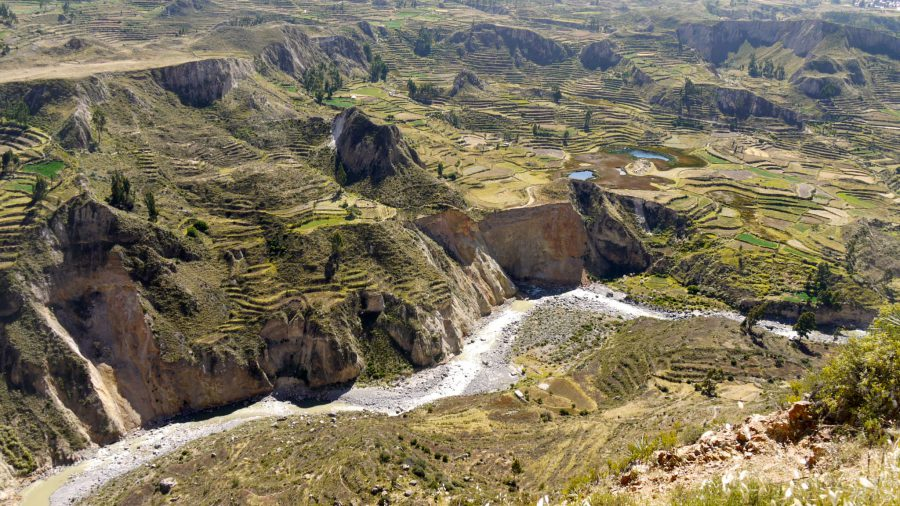 pre inca terraces - Colca Valley