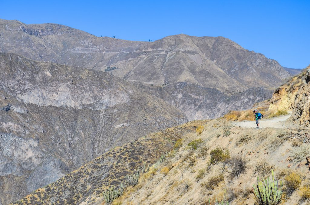 Colca Canyon trek - Photographing the canyon on the ridge line.