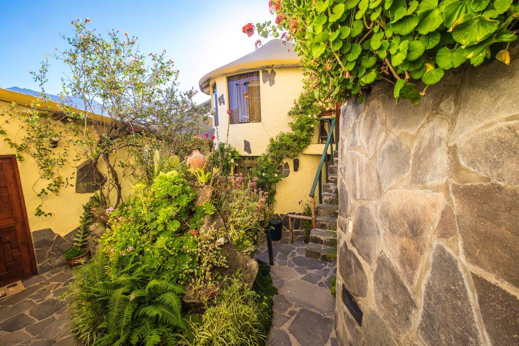 Colca Canyon trek - Kuntur Wassi garden.