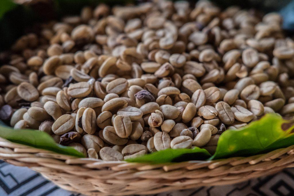New Inca Trail to Machu Picchu, Carcel Trek - Coffee beans