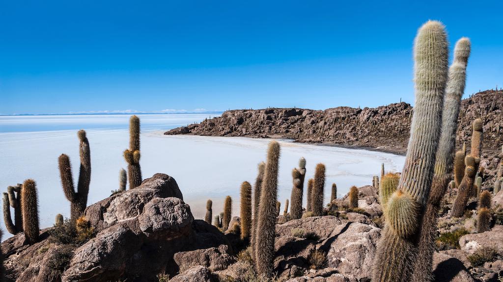 Isla de Pescadores, Salt lake Uyuni in Bolivia
